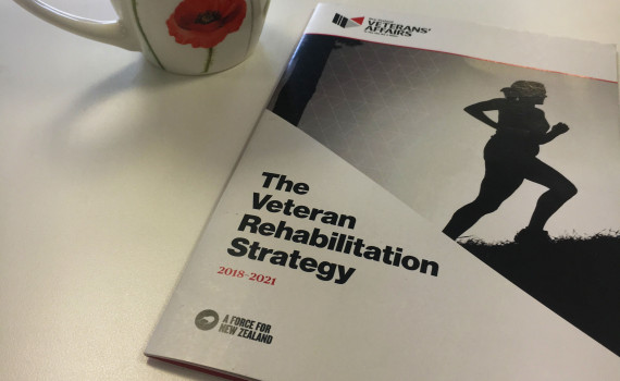 The Veteran Rehabilitation Strategy document